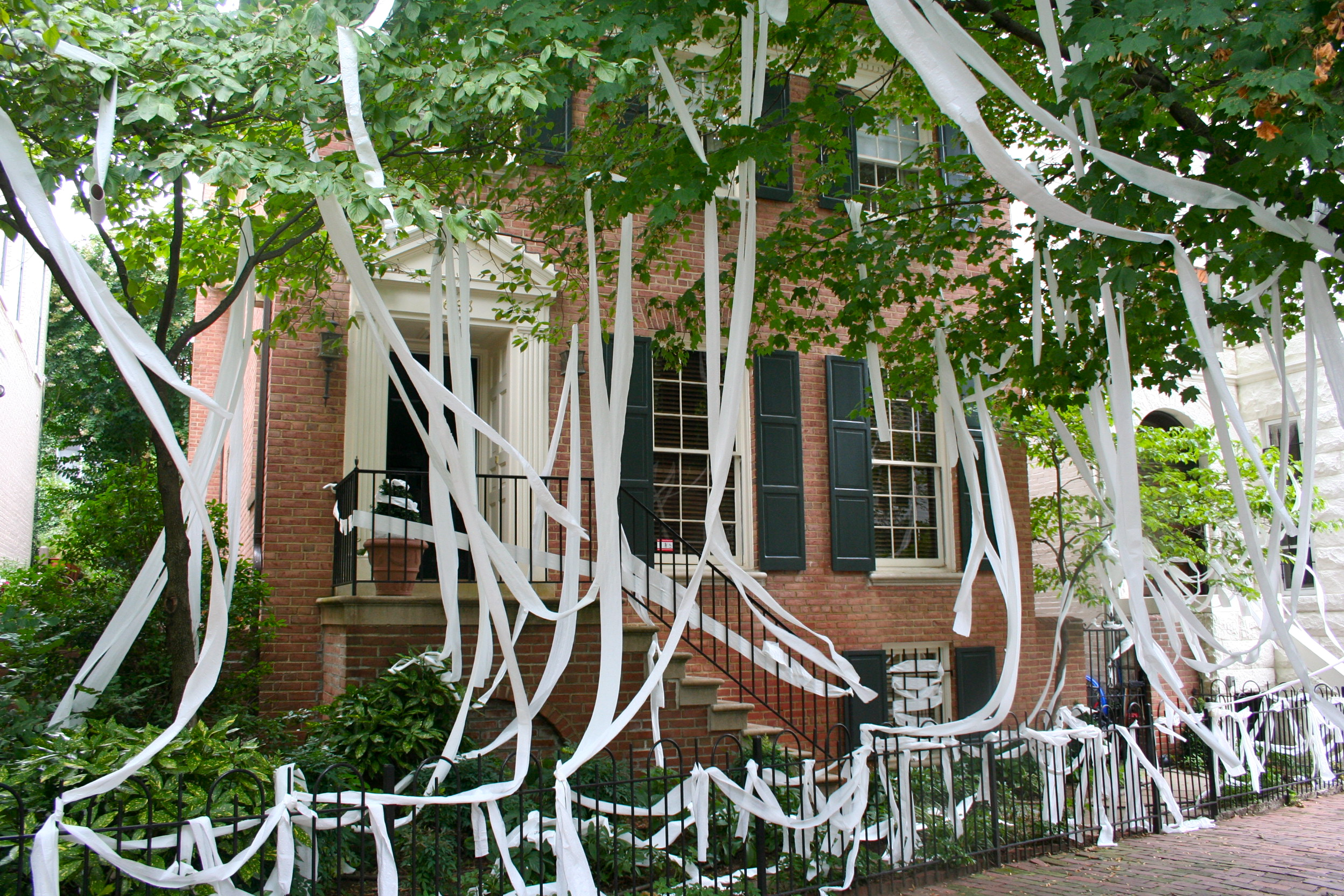The Most Epic Toilet Papered Houses 1808066438