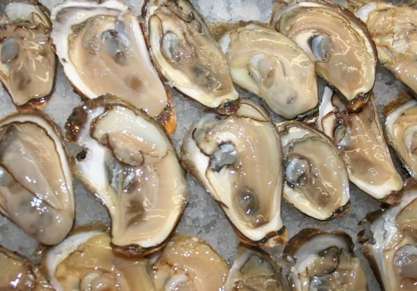 Oysters On The Half Shell DC - CarolJoynt.com